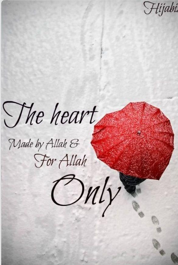 Ya Allah Kya Uchi Shaan Hai Beautiful Islamic Quotes Allah