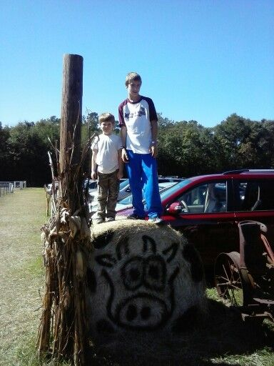 Monkey at the pumpkin patch  with is cousin