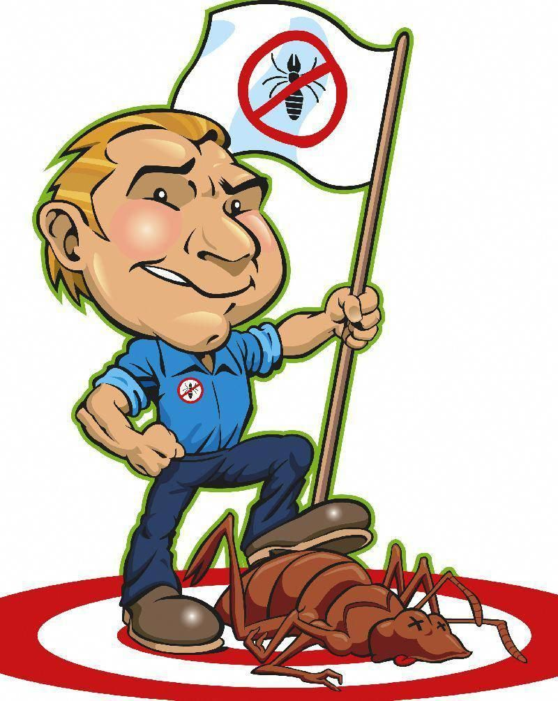 Pest Control Brownsville, TX Contact At (956) 5439014