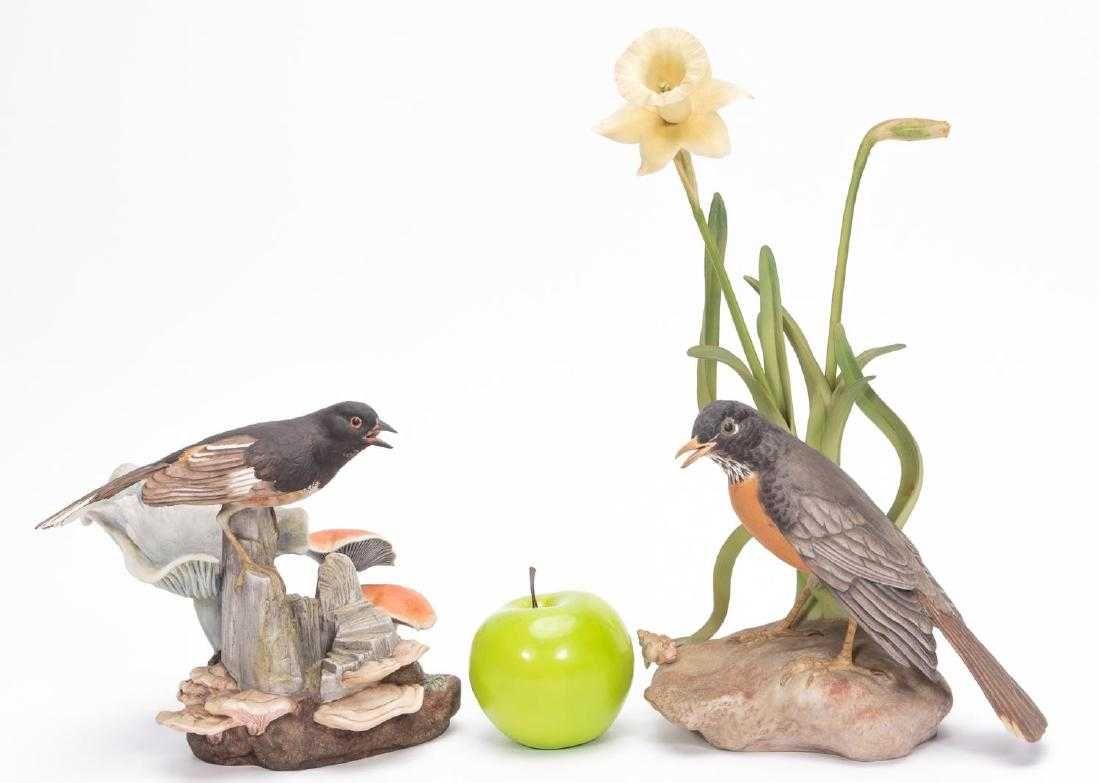 Two Boehm Porcelain Figurines, Robin & Towhee  Porcelain figurines, Porcelain, Figurines