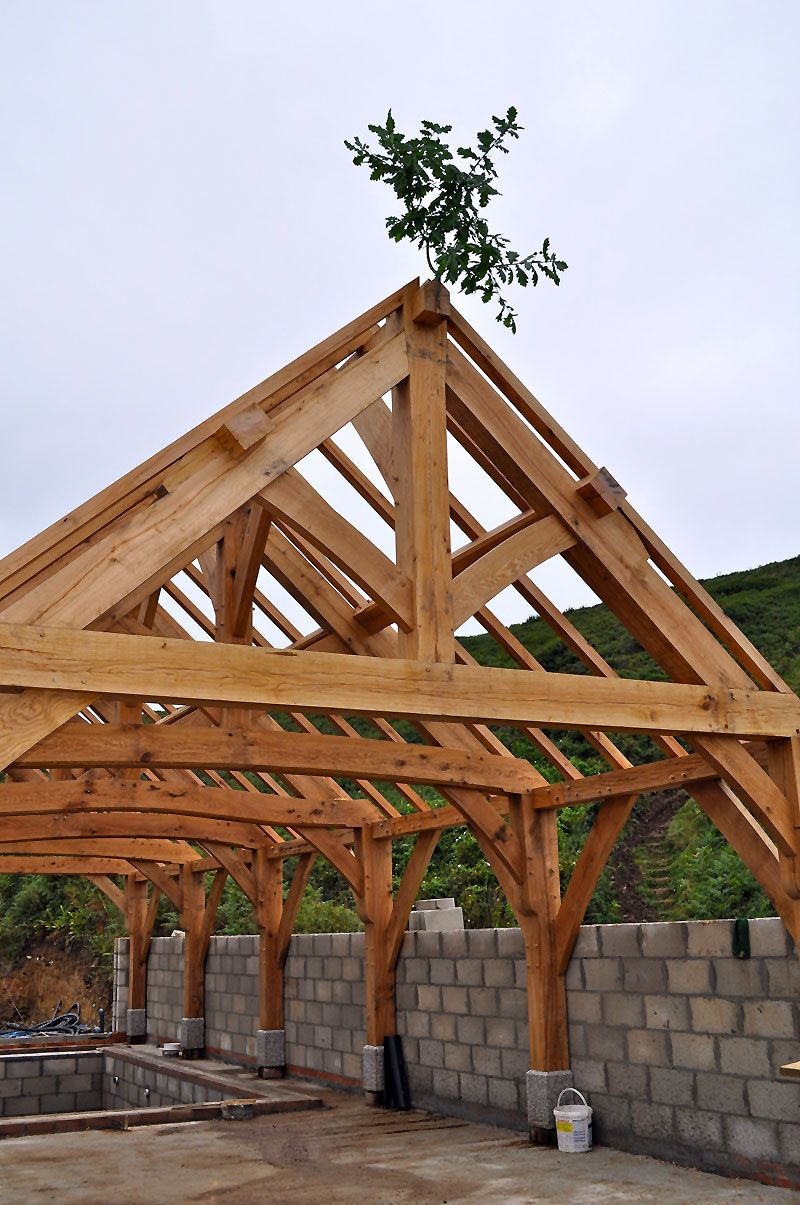 see timber fr hexadots - 736×1108