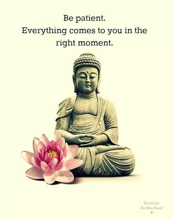 Buddha Quotes On Love Buddha  Quotes  Pinterest  Buddha Buddhism And Wisdom