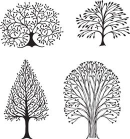 Stumped Over: Super Easy Step-by-step Instructions to Draw