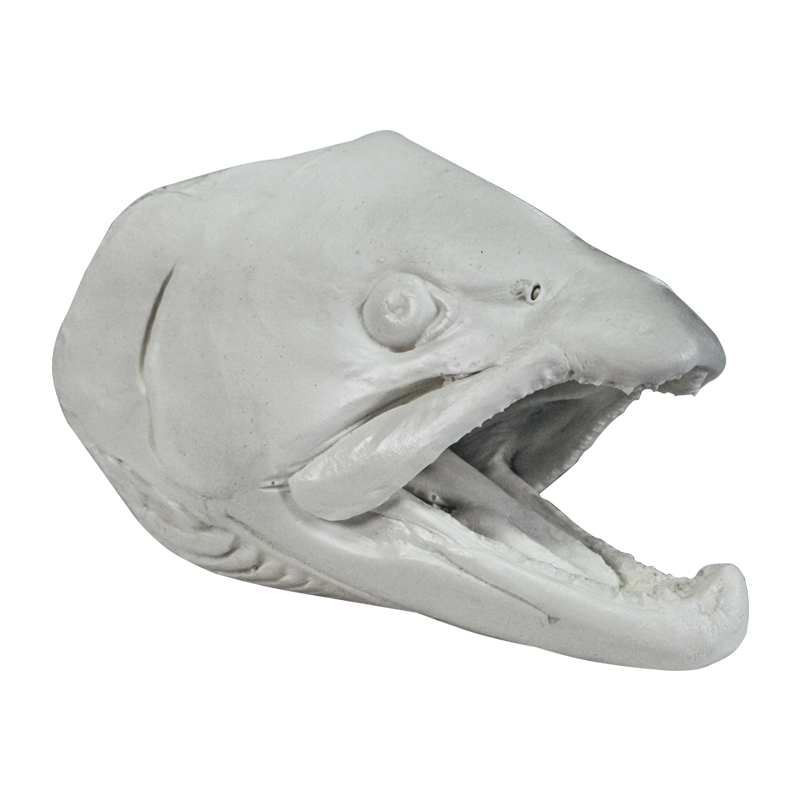 Artificial Fish Heads By Gary Bruch Gary Headed Fish