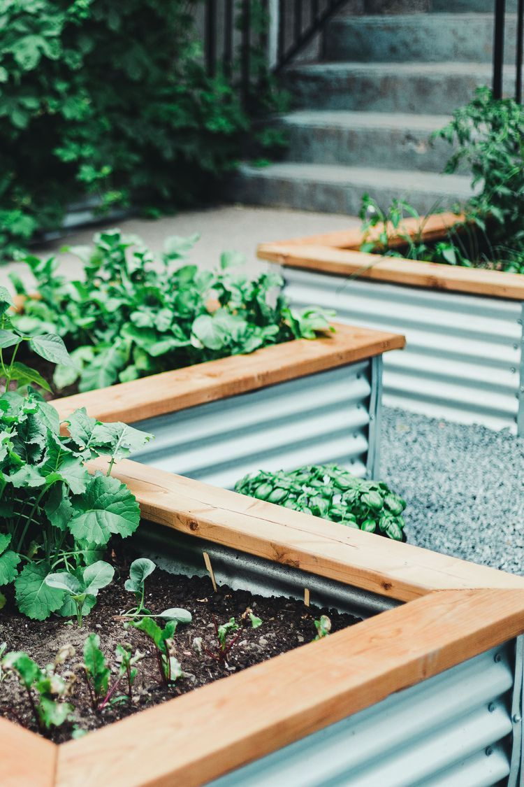 15 Beautiful and Practical Raised Bed Garden Designs in ...