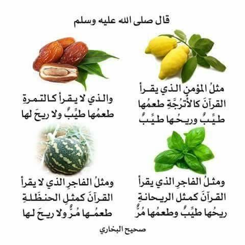 فضل قراءة القرآن Quran Arabic Ahadith Islam