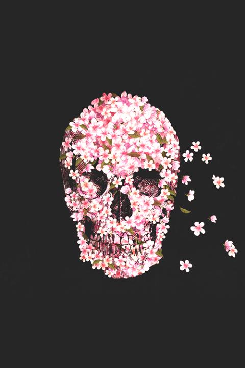 Calavera Con Flores Skull Wallpaper Phone Wallpapers Tumblr