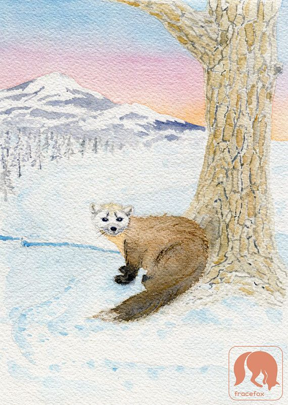American Pine Marten in the Winter Animal and Nature Art