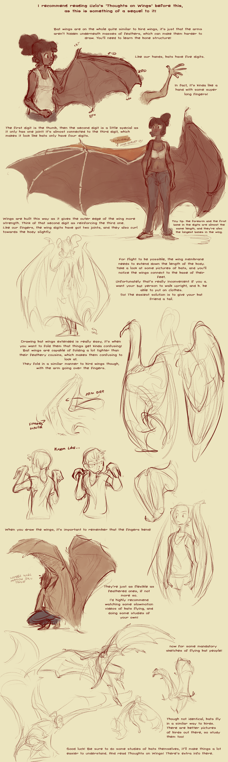 Tutorial For Character Design : Bat wing tutorial by harrie on deviantart ★ character
