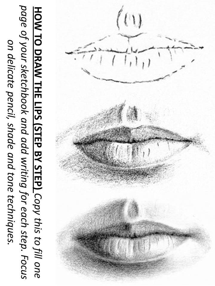 how to draw lips step by step worksheet | Coloring and sketching ...