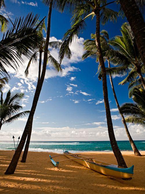 Amazing Beach Shots