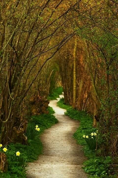 Chemin Meaning