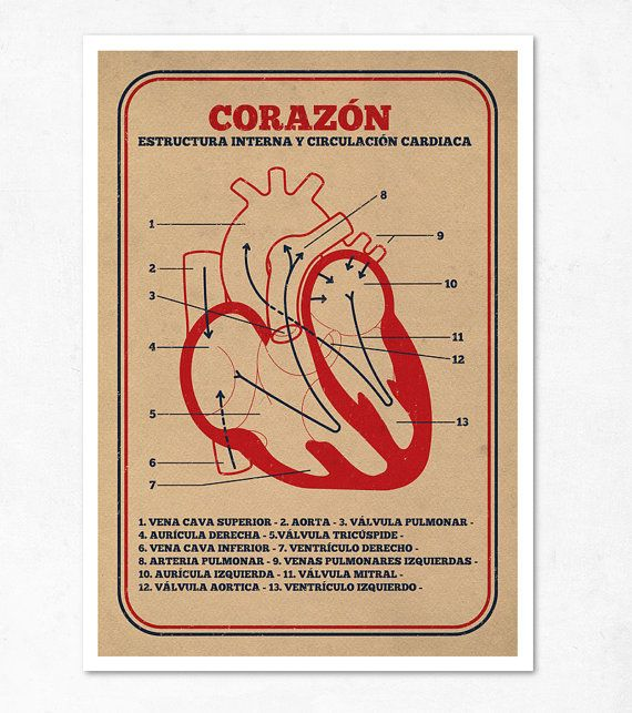 Large Illustration Print 1170 X 1650 A3 Heart Special Por
