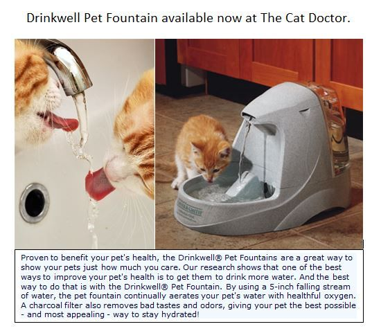 Drinkwell Pet fountains available at The Cat Doctor. www.thecatdoctoronline.com