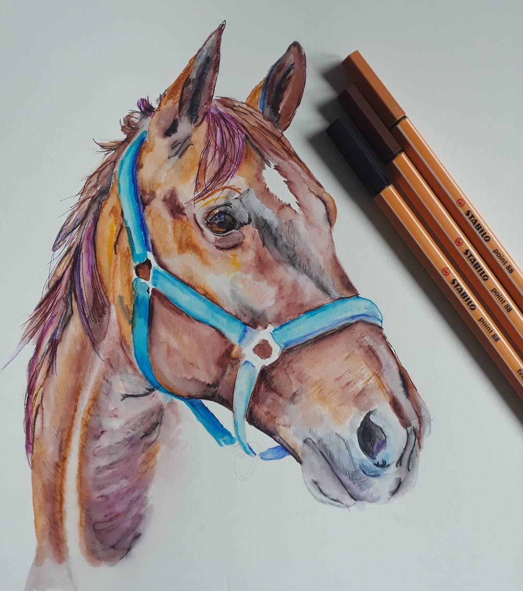 Pferd Zeichnung mit dem STABILO point 88