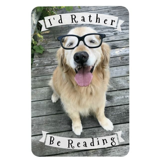 Golden Retriever Dog Id Rather Be Reading Magnet
