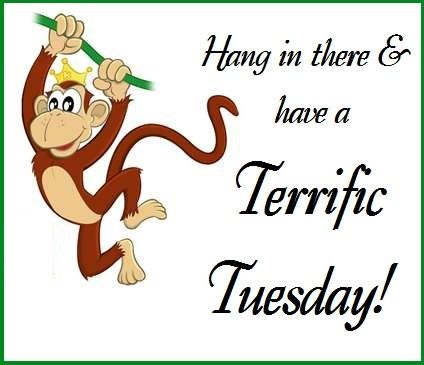 Have A Terrific Tuesday Quotes Quote Days Of The Week Tuesday Tuesday Quotes  Happy Tuesday Tuesday Quote