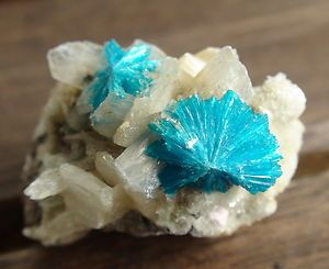 Fantastic Cavansite Crystal on Martix (Poona, India)