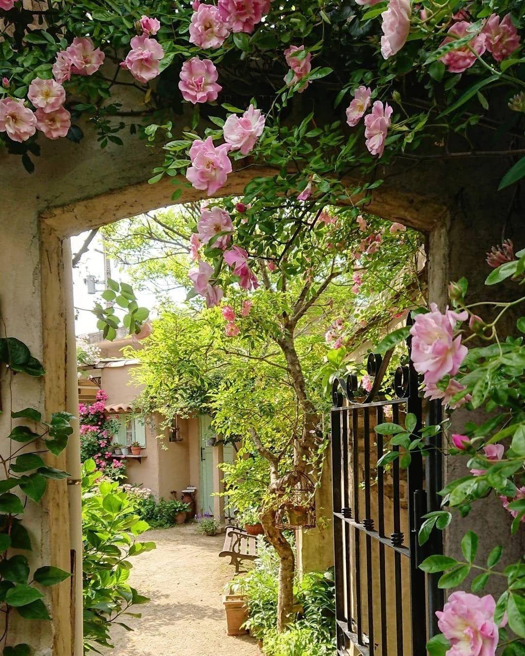 Credit To Owner 𝐖𝐮𝐧𝐝𝐞𝐫𝐬𝐜𝐡o𝐧 Dir Gefallt Dieses Bild Dann Like Es Doch Lass Einen Kommentar Da Gartengestaltung Garten Gartenliebe