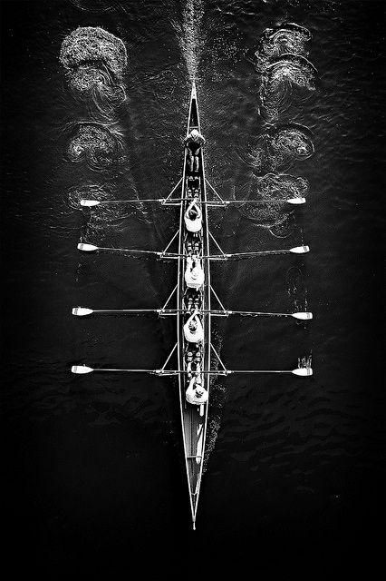 Aerial Shot Of Rowers