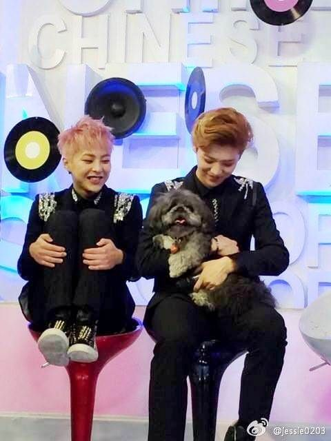 Image of: Exo Xiumin Exo Xiumin And Luhan Is So Fucking Adorablee And Cute Love Em minseok Pinterest Exo Xiumin And Luhan Is So Fucking Adorablee And Cute Love Em