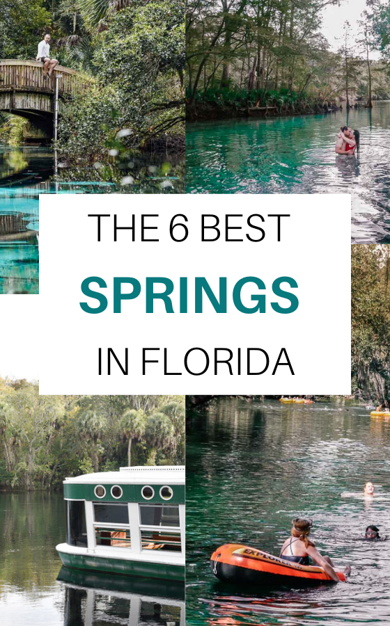 The 6 Natural Best Springs In Florida Stunning Springs You Cannot Miss Couple Travel The World Florida Springs Florida Travel Visit Florida