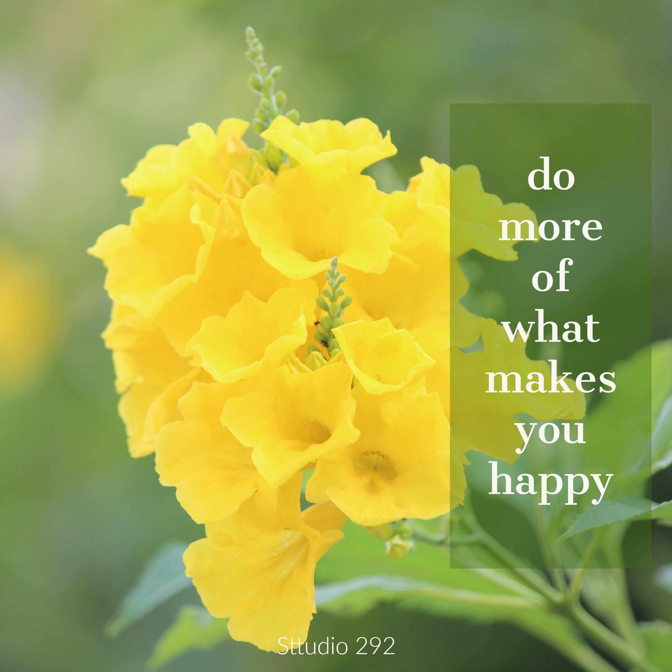 Yellow Tecoma Flowers Quotes On Happiness With Flower Pictures
