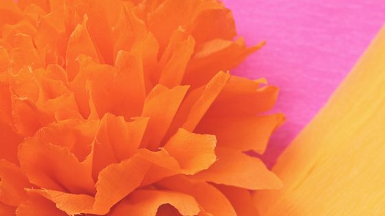 Make mexican paper flowers for day of the dead or cinco de mayo make mexican paper flowers for day of the dead or cinco de mayo party decorations and craft activities mightylinksfo