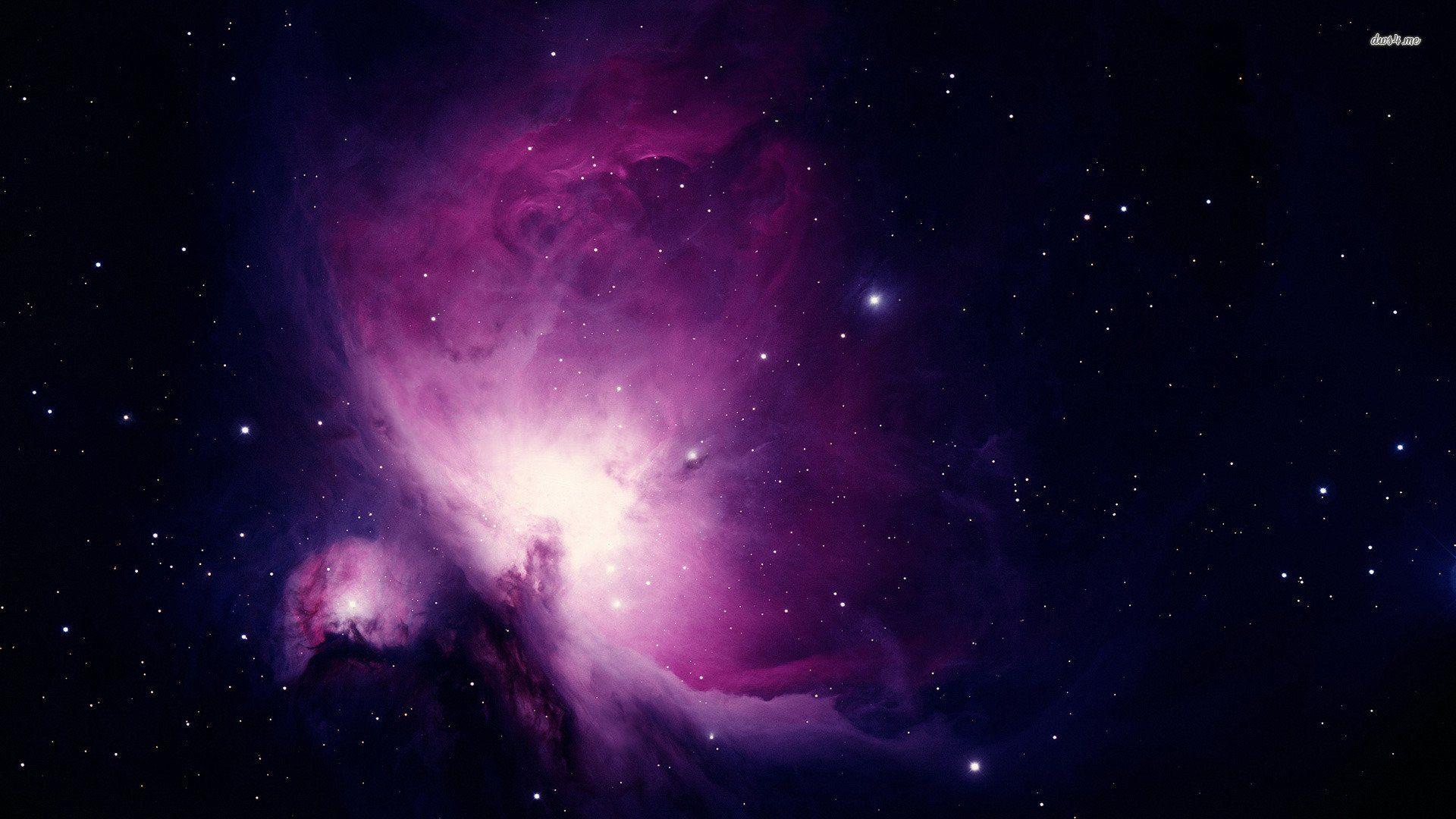 Cool Wallpaper High Resolution Purple - b136bd0d347191e55cbb35349b71bb75  Photograph_132674.jpg