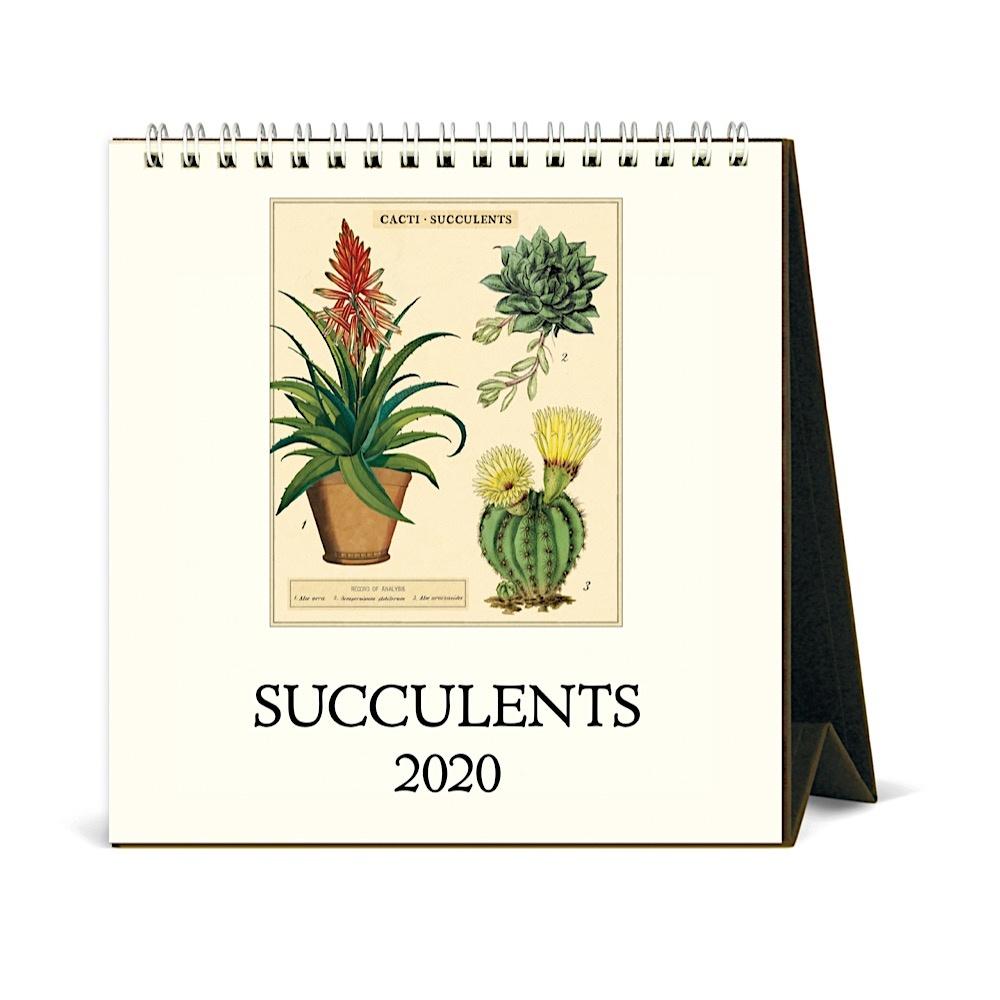 Cavallini Papers /& Co Cats Desk Calendar 2020