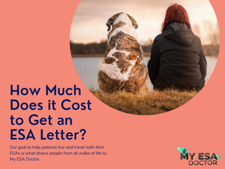 How Much Does It Cost To Get An Esa Letter Emotional Support Animal Esa Letter Lettering
