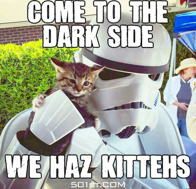 Yay Star Wars Memes Comic Con Disney Star Wars