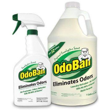 Odoban Odor Eliminator Rtu 1qt Spray Bottle W1 Gallon Concentrate Original Eucalyptus Scent Odor Eliminator Cleaning Smoke Smell