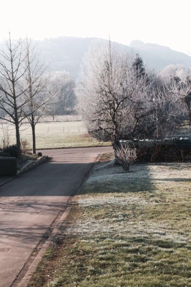 Winter Garten ❄️