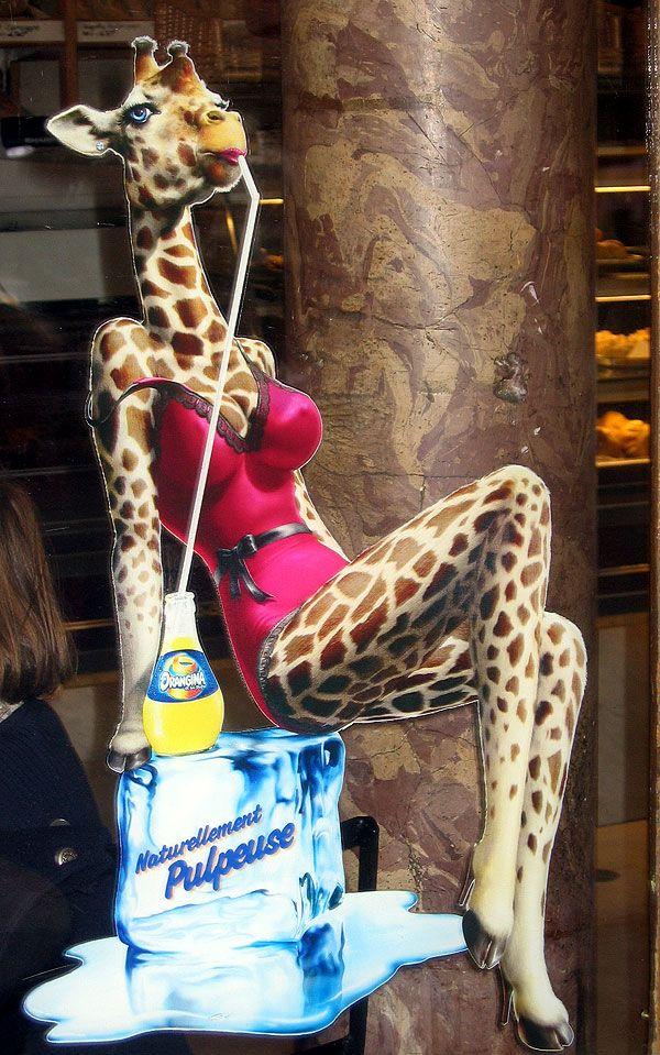 Sexy Giraffe Pictures France Paris Sexy Giraffe
