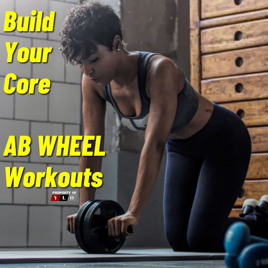 Ab wheel fitness equipment: ab machine for ab workout home gym