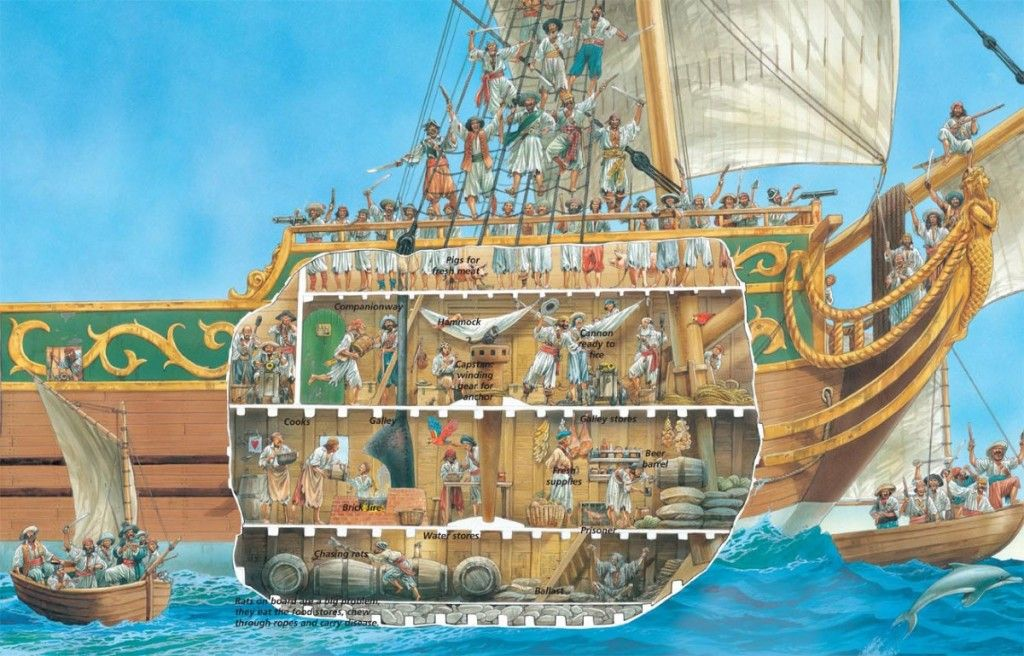 A Cross Section Of Life Aboard A Pirate Ship Pirate Ship Real