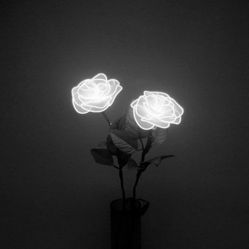 Creepy Black And White Tumblr Themes Wwwtopsimagescom