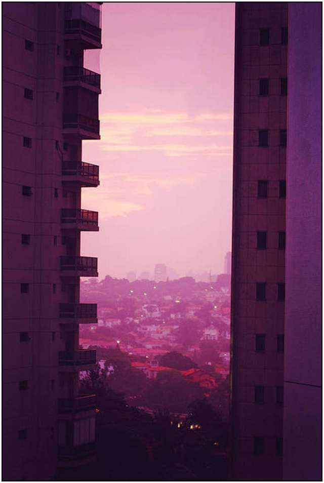 Beautiful pink color photography