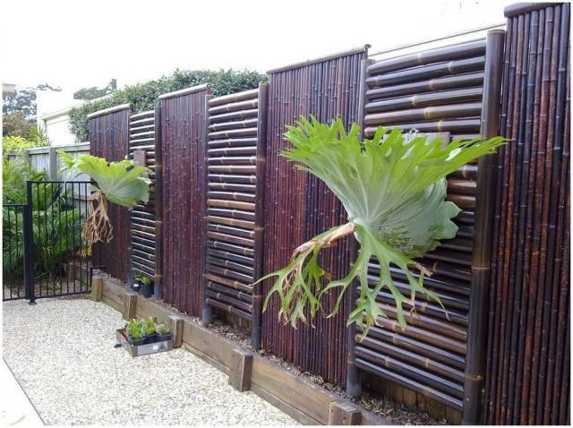 46 Beautiful Privacy Backyard Wood Fence Ideas Bamboo Fence