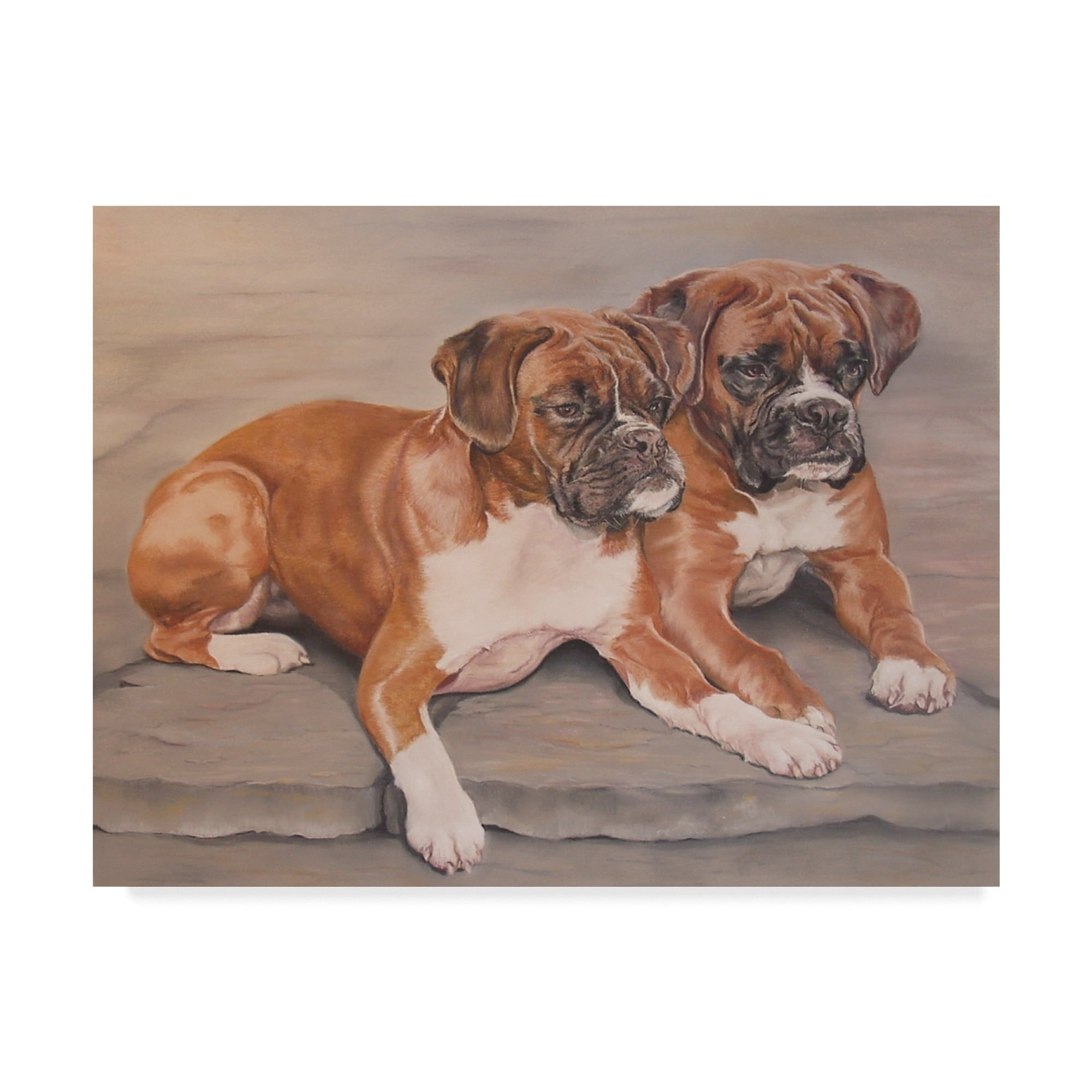 Janet Pidoux Two Boxer Dogs Canvas Art Multi Color In 2020