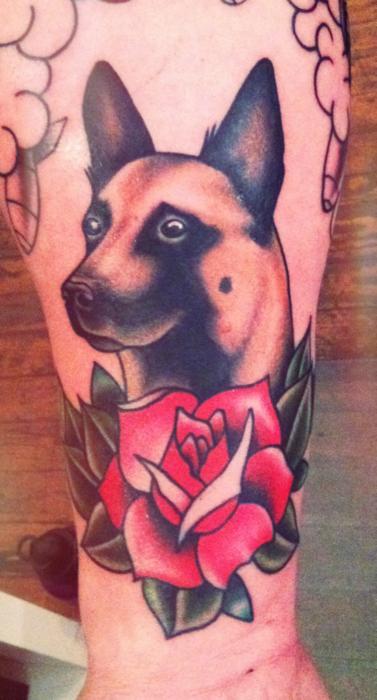 Tumblr Lwq3jsdenl1r1dhrco1 500 Png 377 700 Dog Tattoos Dog Portrait Tattoo Traditional Tattoo