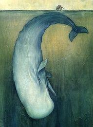 Moby Dick Illustration by Lisel Ashlock