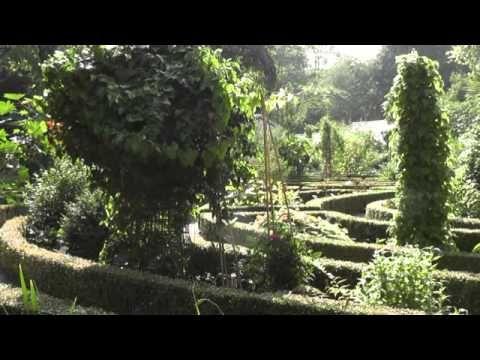 Hortus Botanicus Amsterdam 1 jaar