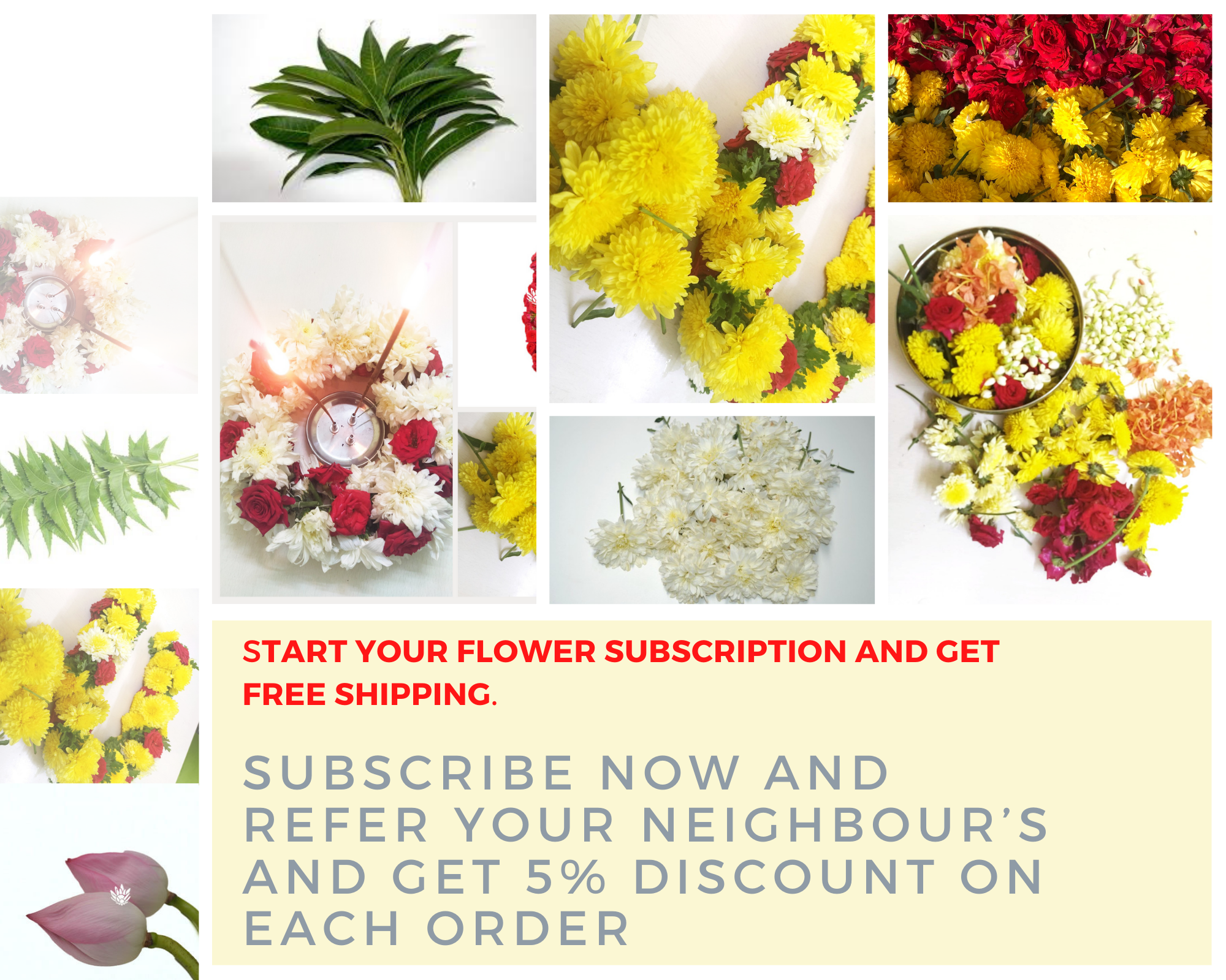 Start Your Flower Subscription And Get Free Shipping Flower Subscription Flowers Delivered Flowers