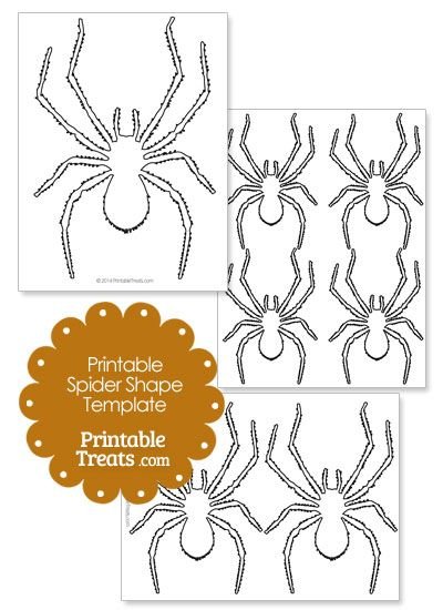 photograph regarding Spider Template Printable identified as Printable Spider Condition Template against