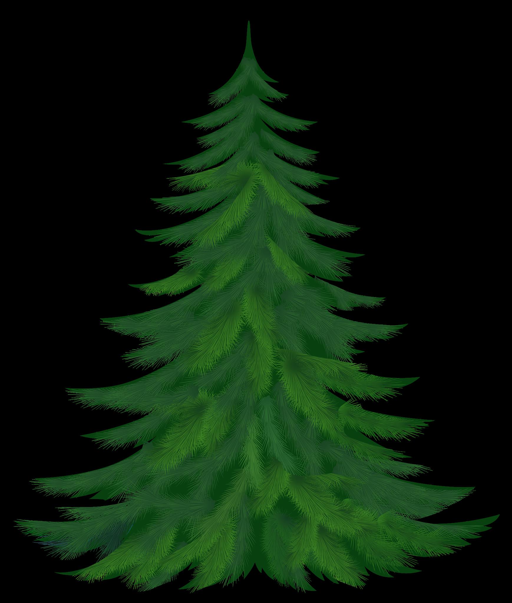 Real Christmas Tree Png Christmas Png Image Clipart Illustrated Christmas Tree Tree Clipart Christmas Tree