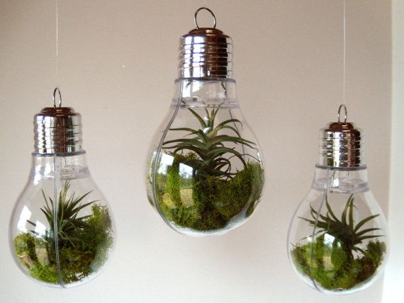 Hanging Light Bulb Terrarium Christmas Ornament Home Hanging