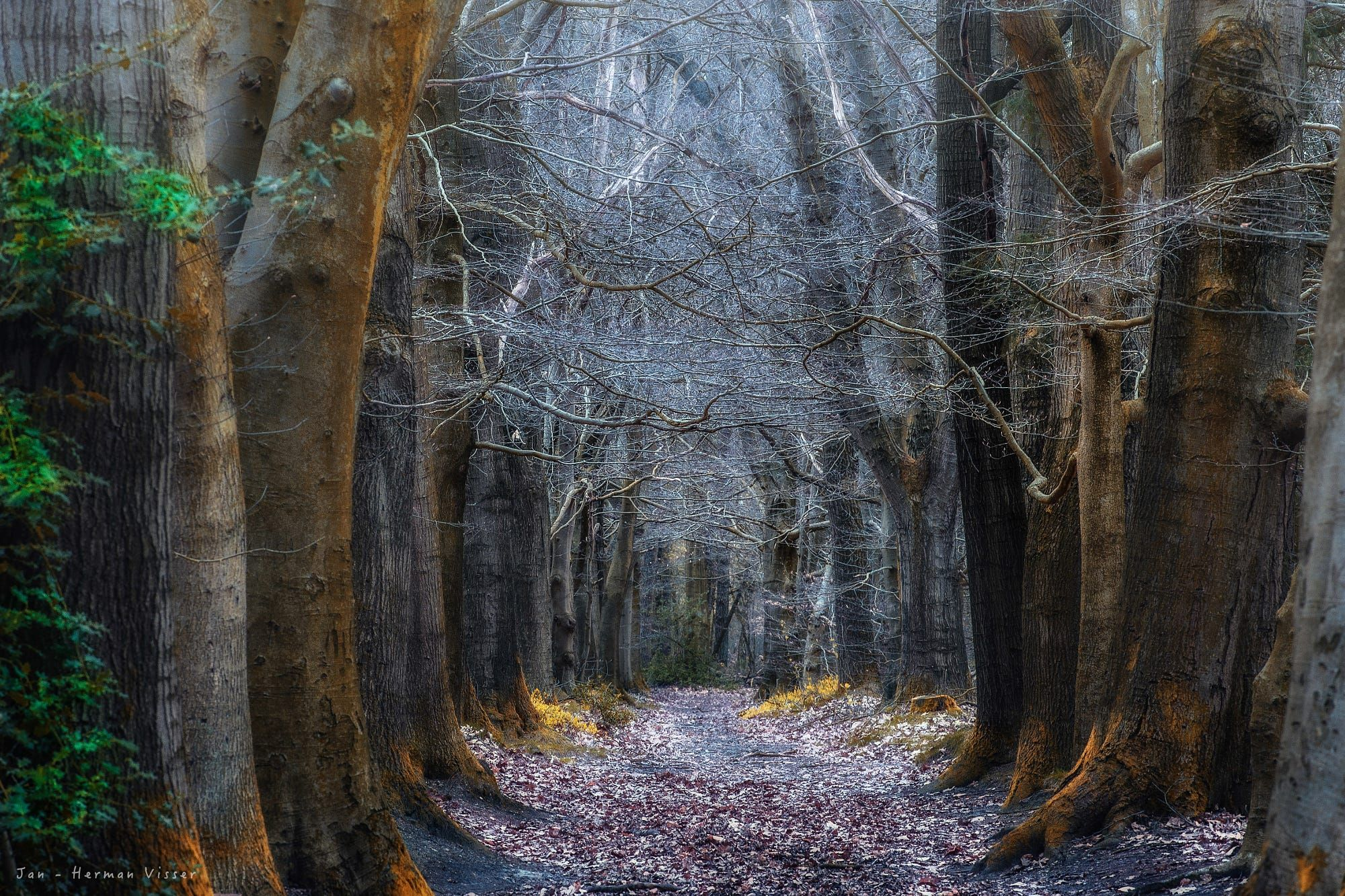 The path of the Hobbits by Jan - Herman Visser on 500px