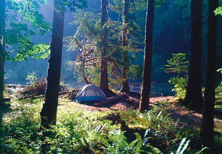 tent.jpg (450×312)